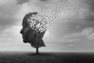 Les jeux d'échecs ralentissent les chances d'avoir Alzheimer - 1